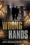 In the Wrong Hands - Avi Domoshevizki